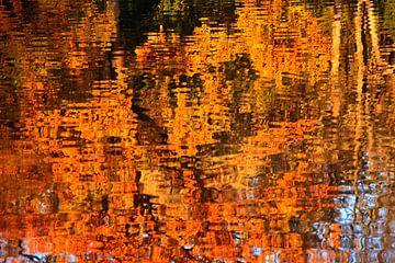 Herbstspiegelung von Edgar Schermaul