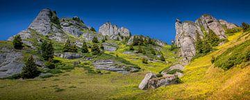 Ciucas gebergte in Roemenië van Antwan Janssen