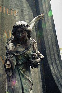 Engel van het Licht van Karen Nadine