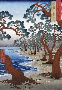Het Maiko strand in Harima, Japan (Harima Maiko no hama) van