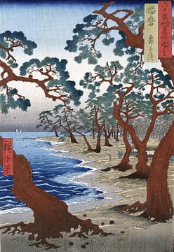 Het Maiko strand in Harima, Japan (Harima Maiko no hama) van Roger VDB