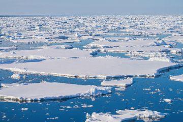 Eisschollen auf dem Meer von Spitzbergen von Merijn Loch