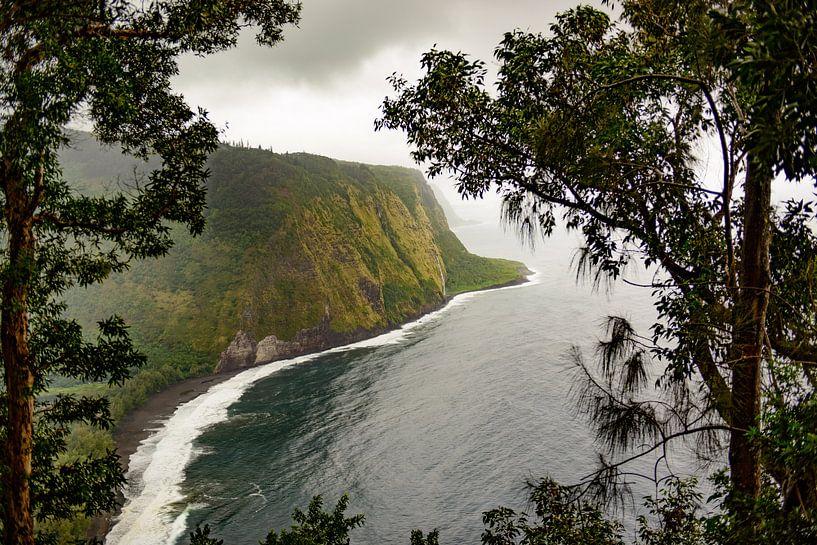 Waipio valley in Hawaii van Jim De Sitter