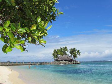 Fiji Time van Sandra Frevel