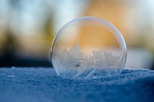 Winter - Bevroren zeepbel VII van Gerben van den Hazel