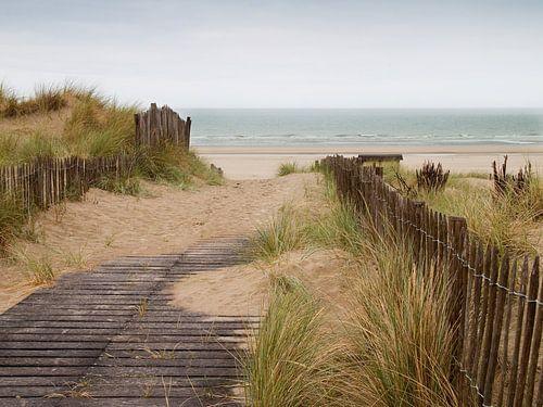 duinen met zicht op zee