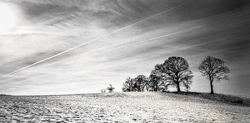 Snowy Hill von Wouter Goedvriend