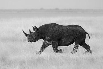 Schützen Sie das Nashorn. von Sharing Wildlife