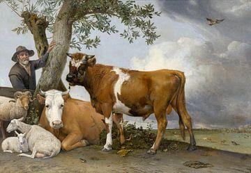 Der Stier - Paulus Potter