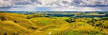 Panorama heuvelland Noordereiland, Nieuw Zeeland van Rietje Bulthuis