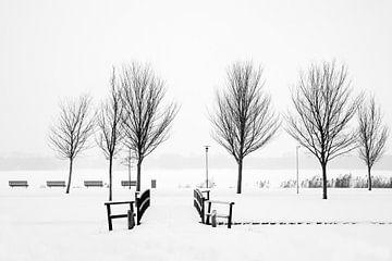 Winter aan de Kralingse Plas von Ton van Buuren