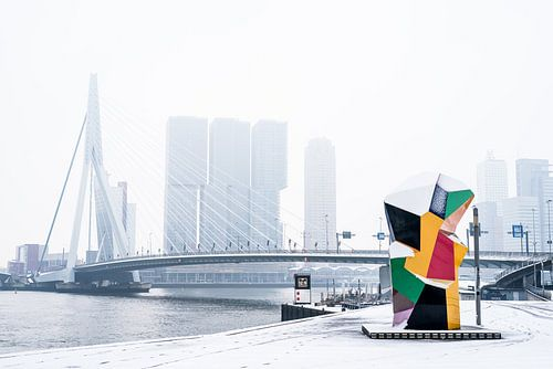 Skyline Rotterdam -  Marathonbeeld van