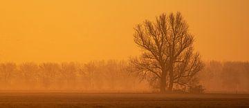 Sonnenaufgang, Niederlande