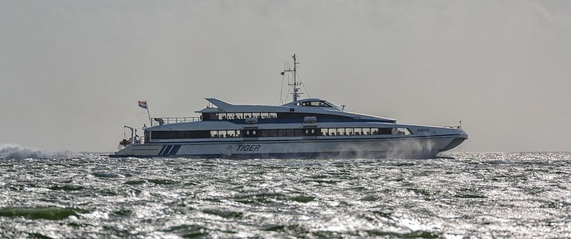 Snelboot Tiger van Roel Ovinge