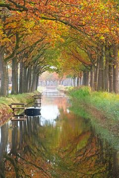 Herfst in Friesland van Dirk-Jan Steehouwer