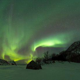 Des aurores boréales sur un paysage hivernal dans les Lofoten, au nord de la Norvège sur Sjoerd van der Wal