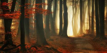 Roter Herbst (Landschaft) von Rigo Meens