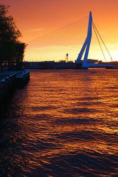Oranje kleuren bij zonsopkomst in Rotterdam von Michel van Kooten