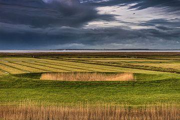 Een dobbe in het buitendijkse gebied van Friesland, Het Noorderleeg