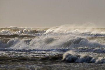 Sonne und Wind weht Brandung von Menno van Duijn