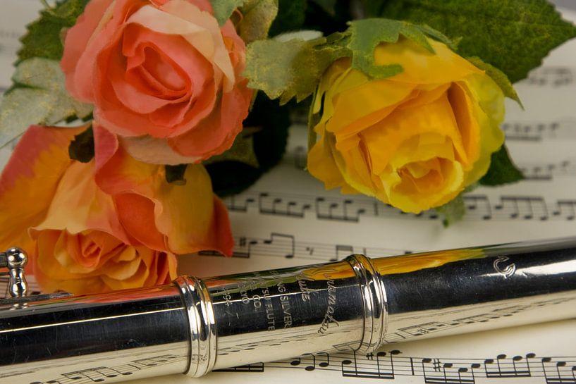 Fluit van De Vos Versteegh fotografie