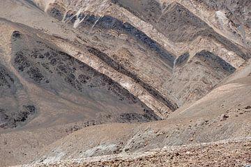 Kleurige berghelling in het Noorden van India van Affect Fotografie