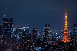 Tokyo Tower 3 van Sander Peters Fotografie