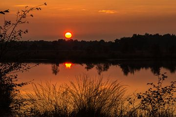 Orange reflection von Jeroen Maas