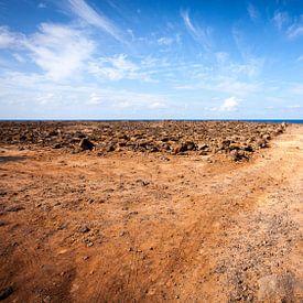 Zuid-westelijke kust van Lanzarote van Victor van Dijk