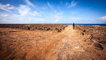 Zuid-westelijke kust van Lanzarote von Victor van Dijk