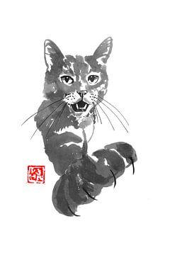 anspruchsvolle Katze von philippe imbert
