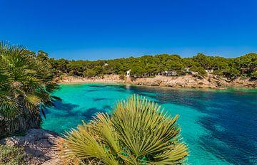 Strand Majorca eiland, mooie baai van Cala Gat, Spanje van Alex Winter