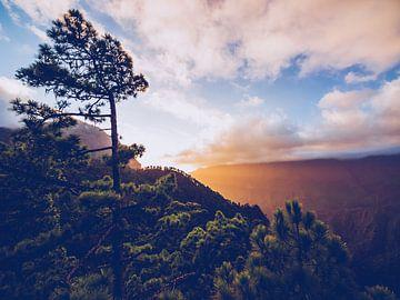 La Palma - Caldera de Taburiente sur