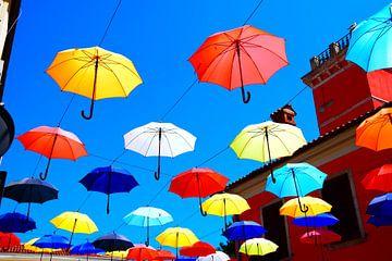 vrolijke paraplu's van morena de vlieger