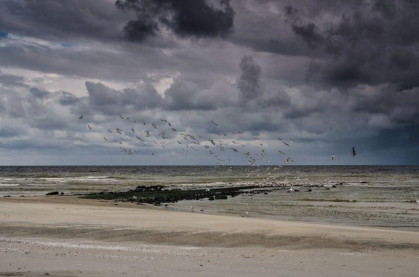 Ter Heijde aan zee van Ricardo Bouman