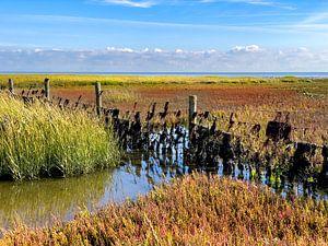 Couleurs d'automne sur la mer des Wadden sur Jan Huneman