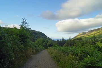 Landschaft in Nordirland von Babetts Bildergalerie