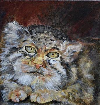 Wild cat van René Pauwels
