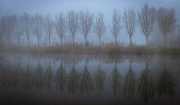 Ein nebliger Morgen von Wim van D