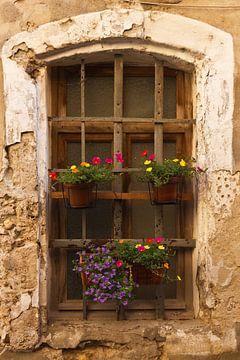 Altes Fenster mit Blumen von Anja B. Schäfer