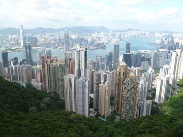 Hong Kong von Martin van den Berg Mandy Steehouwer