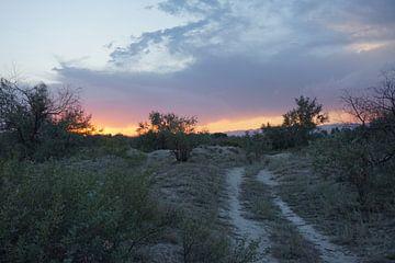 Sonnenuntergang in Kasachstan von Lindy van Oirschot