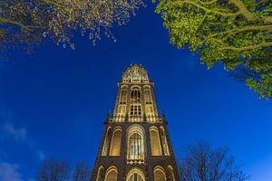 Domtoren Utrecht vanaf het Domplein in de avond - 4