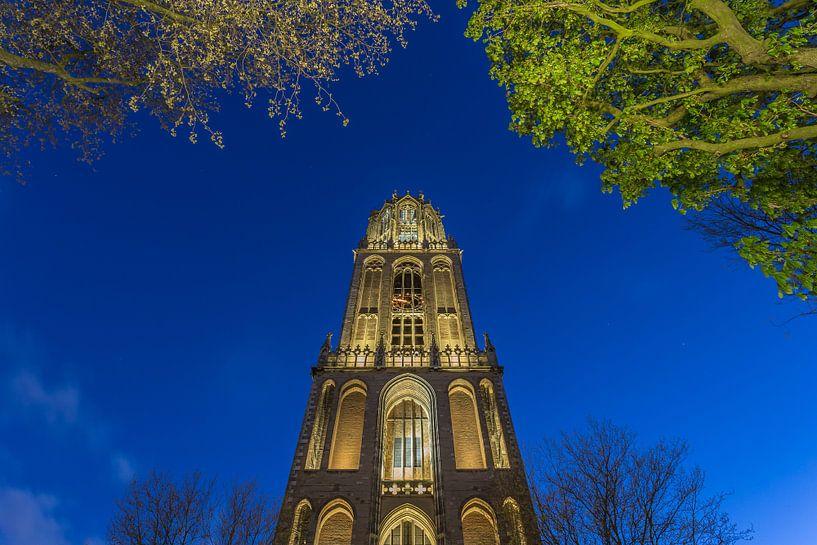 Domtoren Utrecht vanaf het Domplein in de avond - 4 van Tux Photography