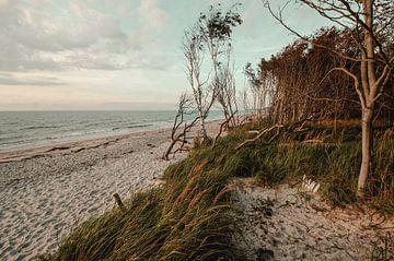 Weststrand Ostsee von Steffen Gierok