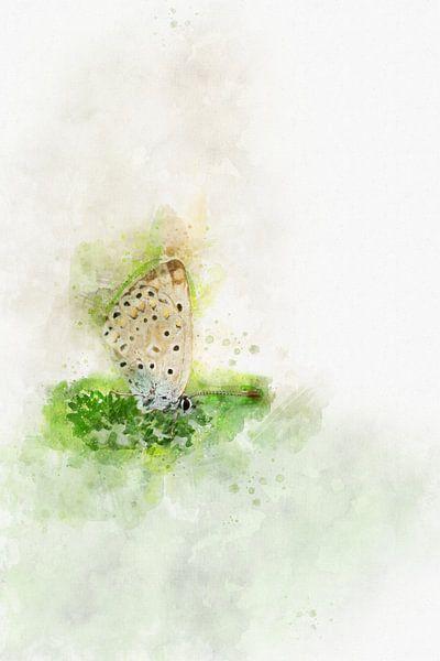 Vlinder 1 van Silvia Creemers