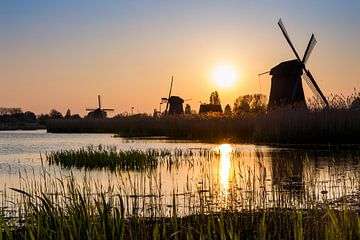 Windmühlen bei Sonnenuntergang von Sander van Veen