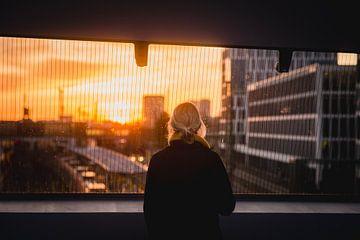 Blick in den Sonnenuntergang von LUDWIGSTREET