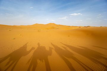 Schaduwen van Kamelen in Marokko van Eline Chiara