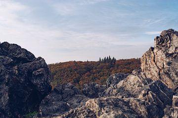 Herbst-Spaziergang von Lizet Wesselman